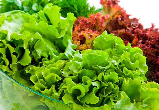 Можно ли кушать листья салата при грудном вскармливании