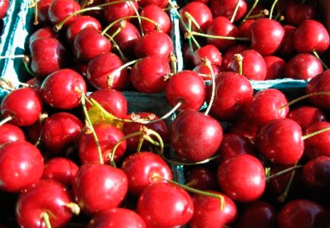 Польза вишни при грудном вскармливании