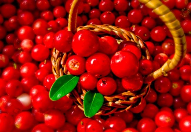 Клюква при грудном вскармливании: можно ли морс или сушеную ягоду кормящей маме