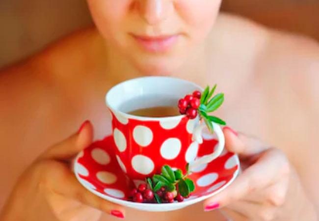 Брусничный чай при грудном вскармливании